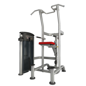 Impulse IT95 Weight Assisted Chin/Dip Combo - 200lbs
