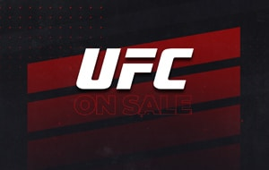 Small Sale Banner for Widget on Website UFC